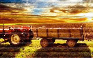 Покупка земли с/х назначения