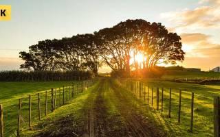 Как правильно продать земельный участок самостоятельно?