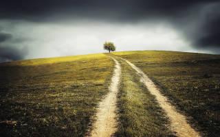 Выделение в натуре земли сельхозназначения