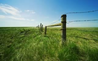 На каком основании определяется стоимость земельного участка?