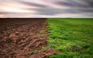 Захват общедолевой собственности на земельном участке