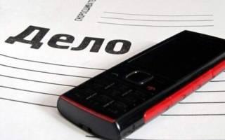Возможно ли досрочное освобождение после обвинения в краже телефона?
