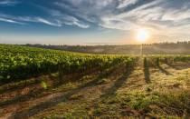Как продать землю пожизненного наследуемого владения?
