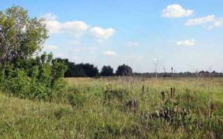 Можно ли продать участок земли без межевания?
