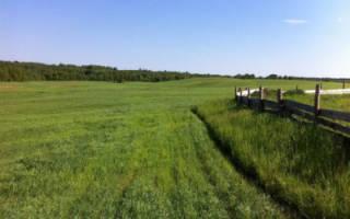 Можно ли продать землю сельхозназначения?