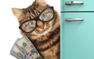 Как оформить налоговый вычет после покупки квартиры?