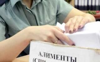 Применимо ли административное наказание к злостному неплательщику алиментов?
