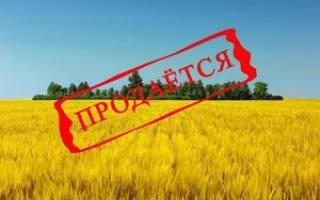 Как продать участок земли сельхозназначения?