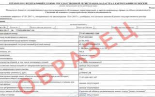 Содержание выписки из ЕГРН об объекте недвижимости