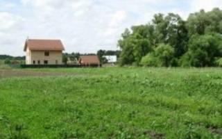 Как продать земельный пай сельхозназначения?