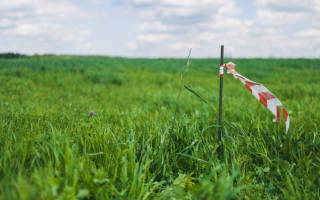 Как правильно установить границы земельного участка?