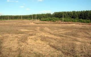 Могу ли я организовать автомойку на земельном участке?